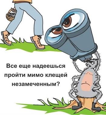 Центр гигиены и эпидемиологии в Приморском крае, Юлия Нестерова