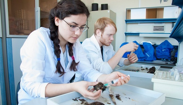 ДВФУ, медицинская химия, Школа естественных наук
