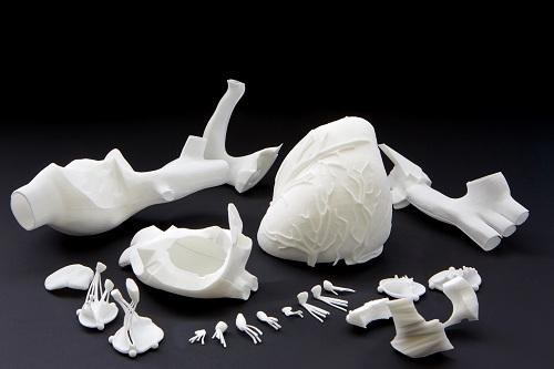 Ассоциация специалистов по 3D-печати в медицине