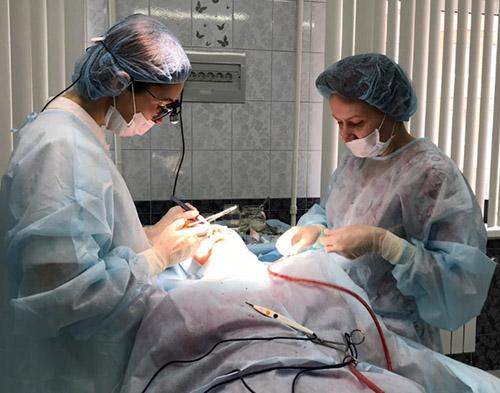 пластическая хирургия, Юлия Оконская