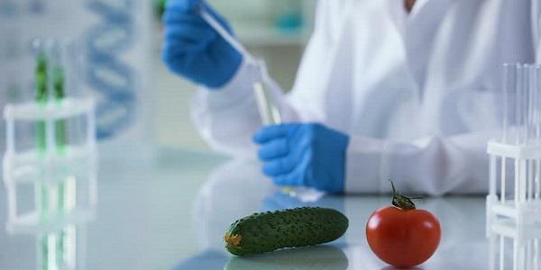 ГМО, маркировка продуктов